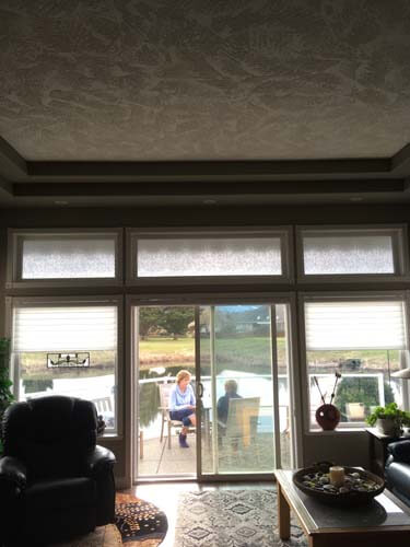 residential window film